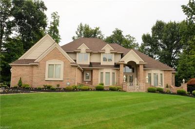 North Royalton Single Family Home For Sale: 11201 Bristol Ct
