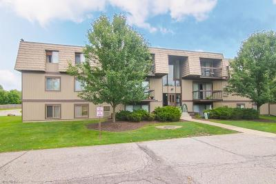 North Royalton Condo/Townhouse For Sale: 9560 Cove Dr #E12
