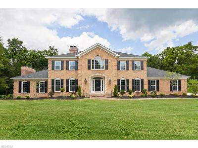 Summit County Single Family Home For Sale: 4825 Pin Oak Rd