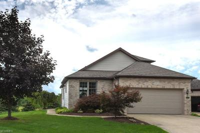 Single Family Home For Sale: 4192 Scenic Way