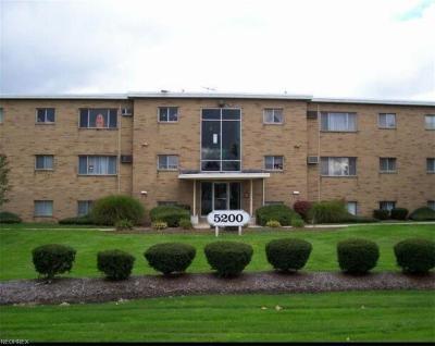 North Royalton Condo/Townhouse For Sale: 5200 Royalton Rd #9D