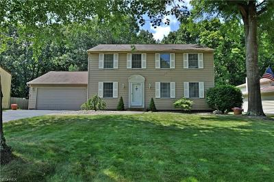 Mineral Ridge Single Family Home For Sale: 1266 Woodledge Dr