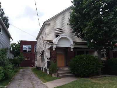 Cleveland Single Family Home For Sale: 3776 East 71st St