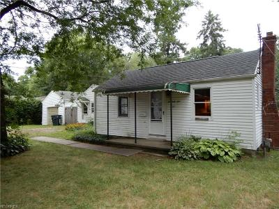 Wadsworth Single Family Home For Sale: 261 Euclid Ave