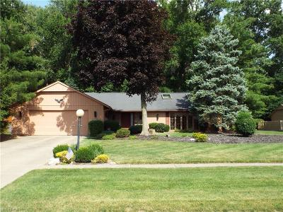 Strongsville Single Family Home For Sale: 10595 Shale Brook Way