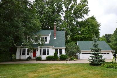 Ravenna Single Family Home For Sale: 6401 Peck Rd