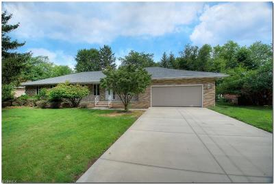 North Royalton Single Family Home For Sale: 10116 Lynn Dr