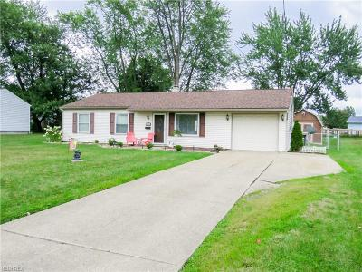 Youngstown Single Family Home For Sale: 5615 Colgate Ave