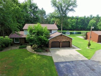 Newton Falls Single Family Home For Sale: 14701 Robinson Rd