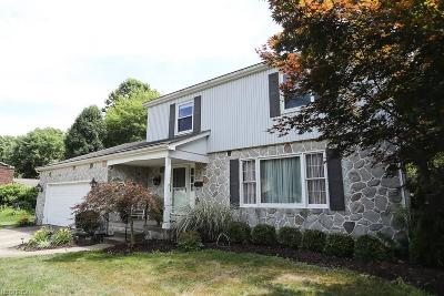 Canfield Single Family Home For Sale: 488 South Briarcliff