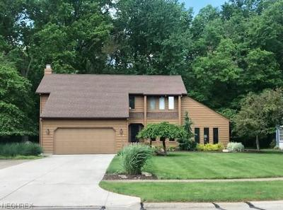Avon Lake Single Family Home For Sale: 290 Greenbriar Dr
