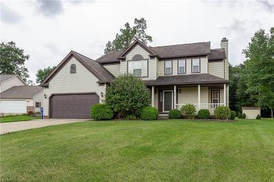 Ravenna Single Family Home For Sale: 884 Collins Pond Dr