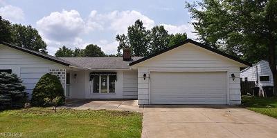 Lyndhurst Single Family Home For Sale: 5240 Dogwood Trl