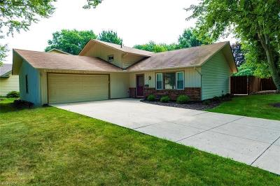 Westlake Single Family Home For Sale: 25995 Williams Dr