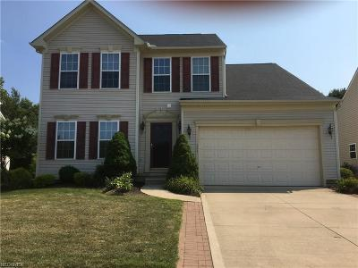 Painesville Township Single Family Home For Sale: 111 Colonial Dr