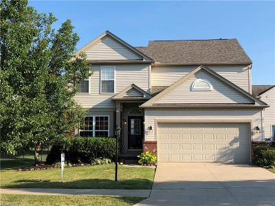 Broadview Heights Single Family Home For Sale: 537 Andover Cir
