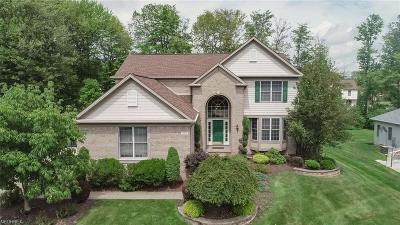 Broadview Heights Single Family Home For Sale: 1415 Honeygold Ln