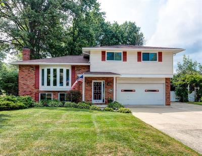 Mentor Single Family Home For Sale: 7430 Truman Ct