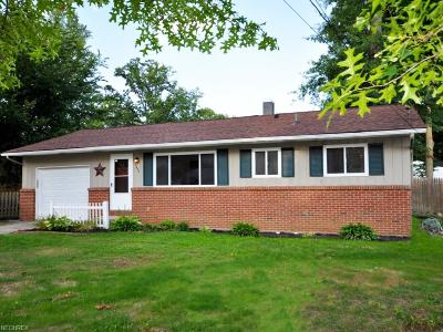 North Ridgeville Single Family Home For Sale: 5455 Wallace Blvd