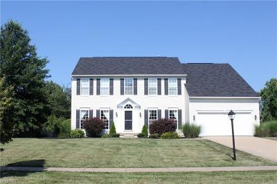 Avon Single Family Home For Sale: 4711 Belmont Dr
