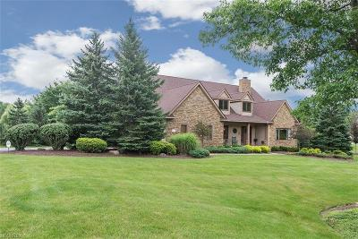 Broadview Heights Single Family Home For Sale: 8135 Thackeray Ct