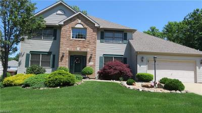 Seven Hills Single Family Home For Sale: 4165 Shelly Dr