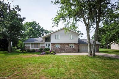 Solon Single Family Home For Sale: 30480 Miles Rd
