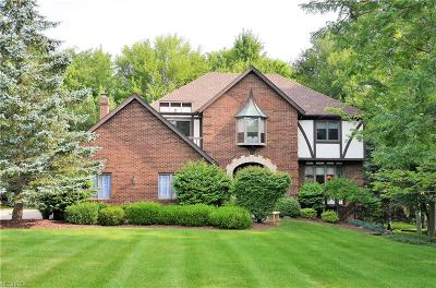 Brecksville Single Family Home For Sale: 8425 Timber Trl