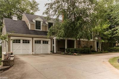 Summit County Single Family Home For Sale: 2971 Silver Lake Blvd