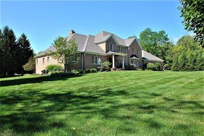Chagrin Falls Single Family Home For Sale: 9735 Stafford Rd
