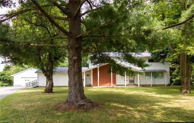 Boardman Single Family Home For Sale: 388 Cranberry Run Dr