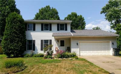 Wadsworth Single Family Home For Sale: 184 Southpark Dr