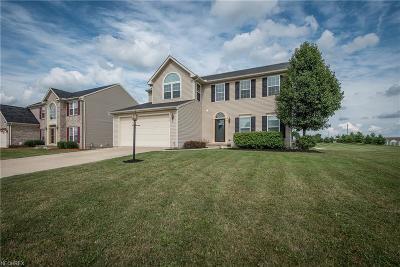 Medina Single Family Home For Sale: 3413 Stillwater Dr