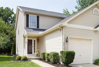 Medina Single Family Home For Sale: 585 Birch Hill Dr #3