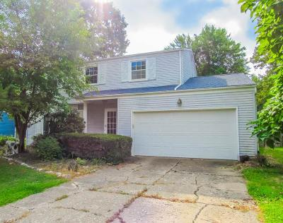 Mentor Single Family Home For Sale: 7726 Ohio St