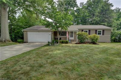 Austintown Single Family Home For Sale: 1613 Lancaster Dr