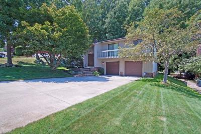 Seven Hills Single Family Home For Sale: 7004 Donna Rae Dr