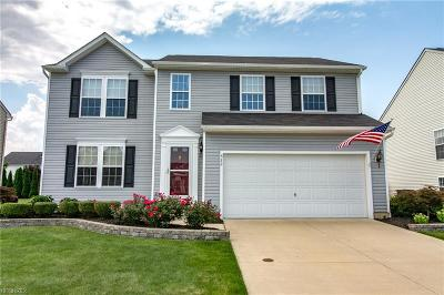 Painesville OH Single Family Home For Sale: $229,900