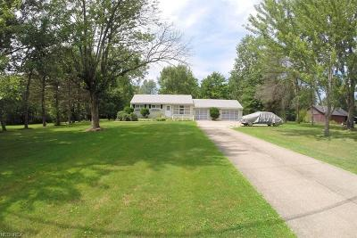 Chardon Single Family Home For Sale: 9002 East Mountain View Dr