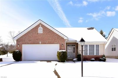 North Royalton Single Family Home For Sale: 10410 East Ravine View Ct