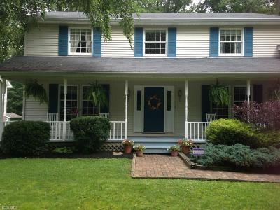 Garrettsville Single Family Home For Sale: 8185 South Park