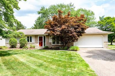 Strongsville Single Family Home For Sale: 15595 Pinewood Dr