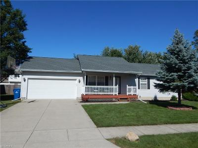 North Ridgeville Single Family Home For Sale: 33986 Adams St