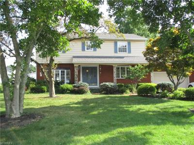 Elyria Single Family Home For Sale: 413 Briar Lake Dr