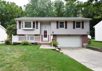 Avon Lake Single Family Home For Sale: 32593 Belle Rd