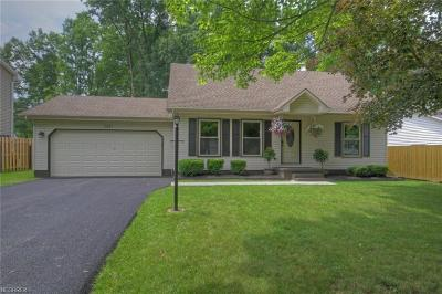 Youngstown Single Family Home For Sale: 142 Fairmeadow Dr
