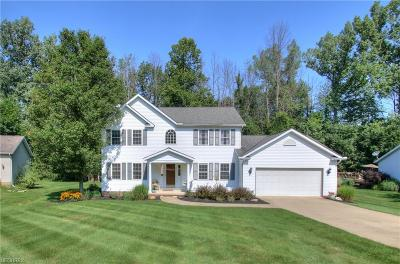 Painesville Township Single Family Home For Sale: 295 Mountainside Dr