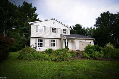 Canfield Single Family Home For Sale: 4073 Pleasant Valley Ln