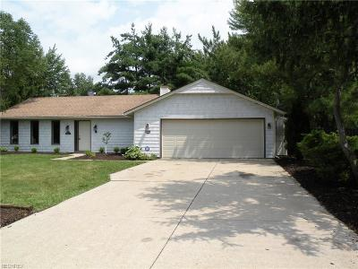 Strongsville Single Family Home For Sale: 10797 Meadowgrass Rd