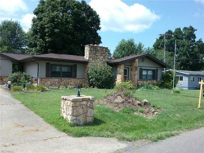 Byesville Single Family Home For Sale: 285 South 5th St